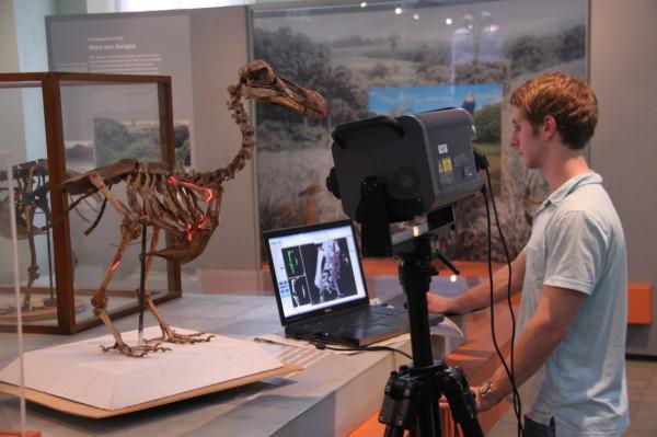 Dodo-Vogel-Skelett zeigt, dass verloren geglaubte Geheimnisse in 3D ...