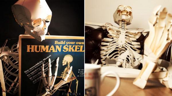 Pauken für Anatomie ist einfacher, wenn Ihr Buch verwandelt sich in ...