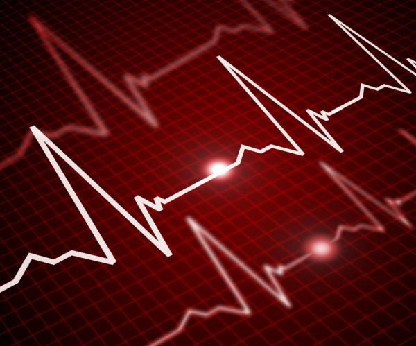 11 überraschende Fakten über das Herz-Kreislauf-System
