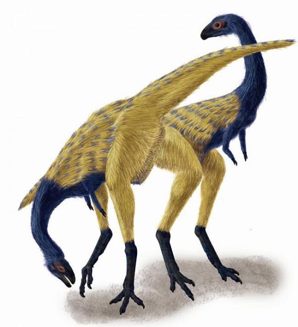 Fossil löst Rätsel der Dinosaurier Finger Evolution