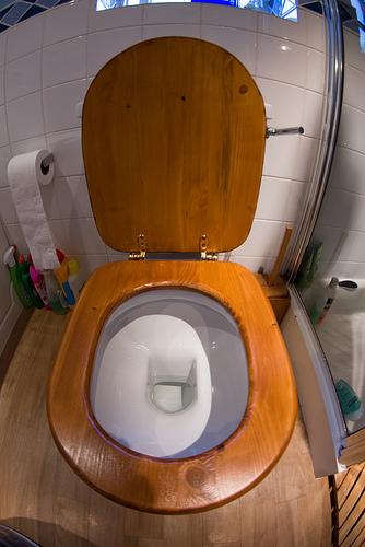 sie sagen ausgefallene wc sitz schlecht fr kinder butts