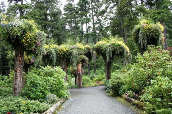 ... Neu Bepflanzt Und Verwandelte Sie In Natürlichen Blumentöpfe. Die  Spitzen Sind Einige Füße In Der Erde Vergraben, Während Die Wurzeln Ein  Nest Für ...